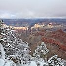 Snowy Rim by Chris Snyder
