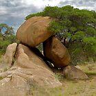 Arizona Boulders by ScottishVet