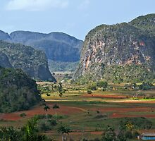 Valle de Viñales by Yukondick