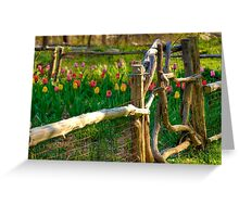 Tulips in the Garden Greeting Card
