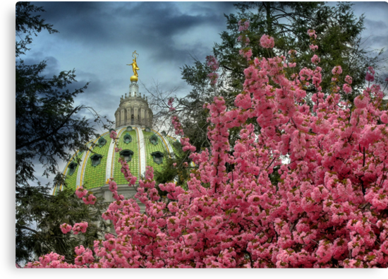 Spring at the Capitol by Lori Deiter