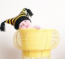 Baby bumble bee by Gail  Galbraith