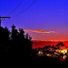Sunrise At Allambie. Brisbane, Queensland, Australia. (2) by Ralph de Zilva