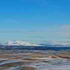 Palouse view 1 by AdventureGuy