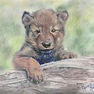 Wolf Pup by George Yesthal