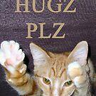 Hugs Please by shandab3ar