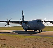 Hercules in the Afternoon Sun by Bairdzpics