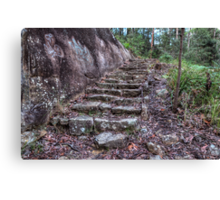 Step roughly Canvas Print