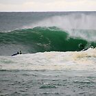 the swell. bicheno, tasmania by tim buckley | bodhiimages photography