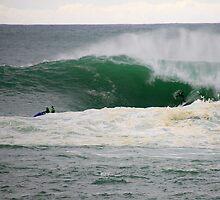 the swell. bicheno, tasmania by tim buckley | bodhiimages