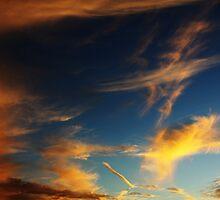 Painting the sky by Quintin Gerber