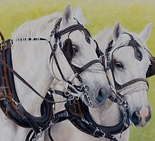 A working pair by Pauline Sharp
