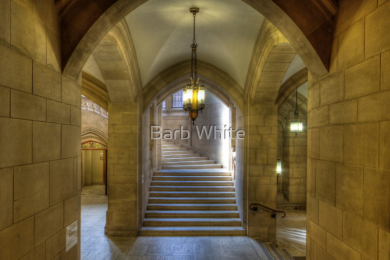 Grand Staircase to Suzzallo Reading Room by Barb White