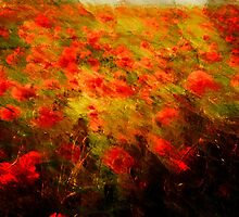 We Will Remember by Robin Brown