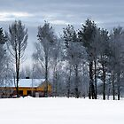 Yellow house in winter time by Antanas