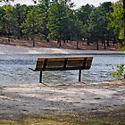 Come and Sit for a While by Paul Gitto