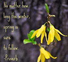 Spring Is Sure To Follow by A Different Eye Photography