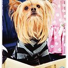 Cute Oliver Gets Ready for A Trip by susan stone