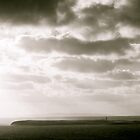 Island in Donegal, Black and White by heatherbyrne