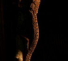 Reptilian Stalker by Gideon van Zyl