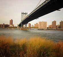 Autumn Under the Manhattan Bridge by Vivienne Gucwa