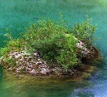 The Rock by Karen  Rubeiz