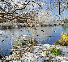 Wintry River at Newton Road Park by Rod Johnson