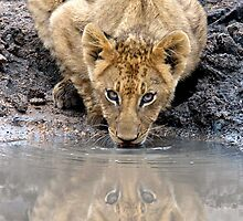 I See You....Twice by Michael  Moss