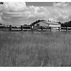 field & house by Sandy Taylor