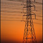 Power Lines at Sunset by Trudy LeDoux