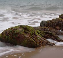 Sand, Sea, Seaweed by Dave Godden