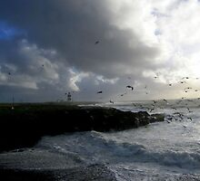 Stormy Day at Hook Head Lighthouse... Ireland by eithnemythen