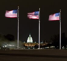 Flags fly over the Capitol by night by BeardyGit