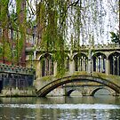 The Bridge of Sighs, River Cam, Cambridge. by artfulvistas