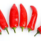 Red chilli peppers by smcneem