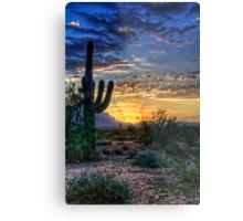 Sonoran Sunrise  Metal Print