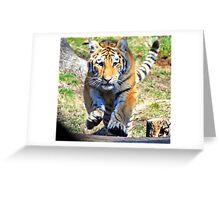 Charging Tiger Greeting Card