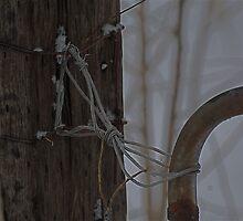 Bow Tie  London, Ontario by creativegenious