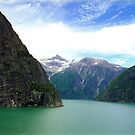 Alaska Fjords  by Alberto  DeJesus