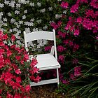 Tea Time in the Azalea Garden by Dawn di Donato