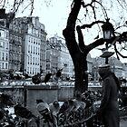 Les Oiseaux de Notre Dame - Paris, France by Kathryn  Young