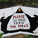 Do Not Feed the Birds - not even a wafer thin mint! by BronReid