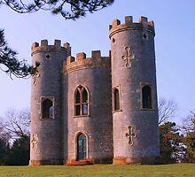 Blaise Castle at First Light by Dawn B Davies-McIninch