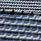 drifting roof by yvesrossetti