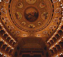 Il Teatro Massimo BELLINI in tutto il suo splendore by Andrea Rapisarda