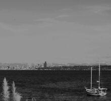 Seattles Ambiance by Suzanna Dixon