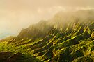 Rain in Kalalau Valley by Flux Photography