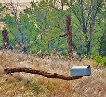 Mail Call... Whitebird, Idaho by trueblvr