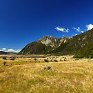 New Zealand&#x27;s Hooker Valley by 104paul