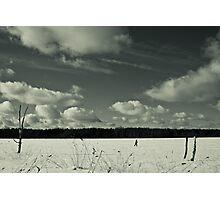 Walking on ice 2 Photographic Print
